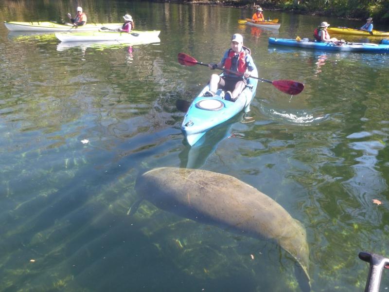 Kayak Tours ORLANDO  BLUE SPRINGS STATE PARK