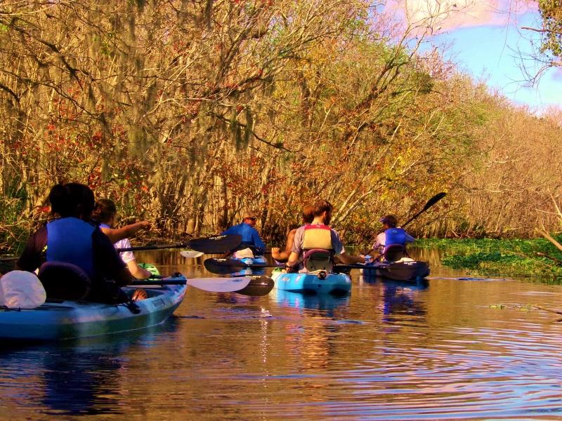 Manatee Kayaking Tours ORLANDO BLUE SPRINGS STATE PARK