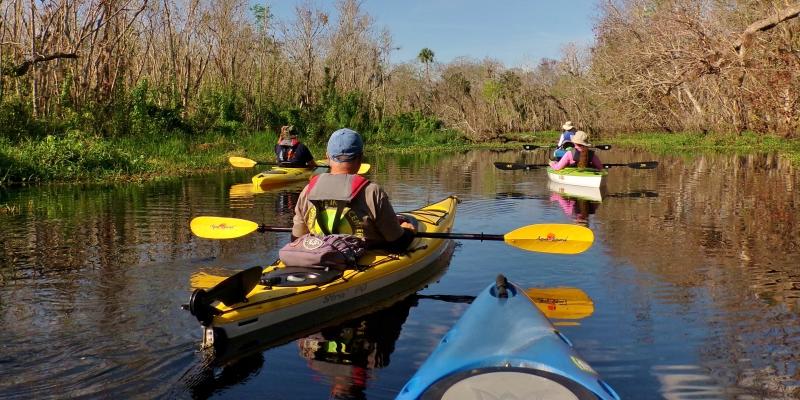 Manatee Kayak Tours BLUE SPRINGS STATE PARK