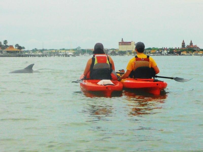 St Augustine Kayak Tours