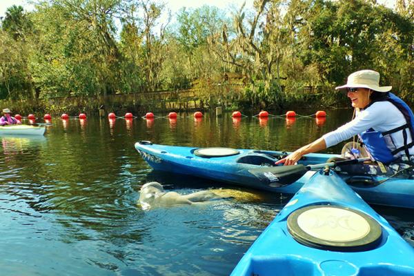 kayaking tours Orlando
