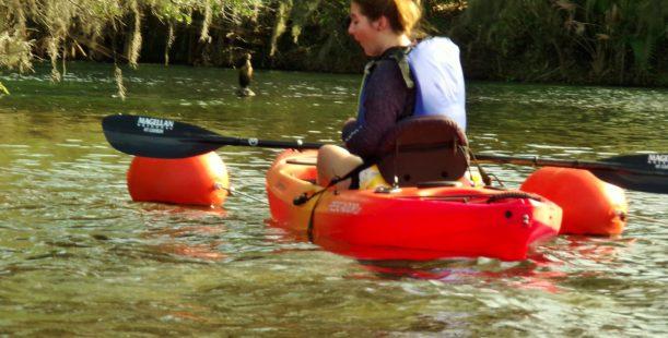 Mnatee Kayak Tours Blue Springs