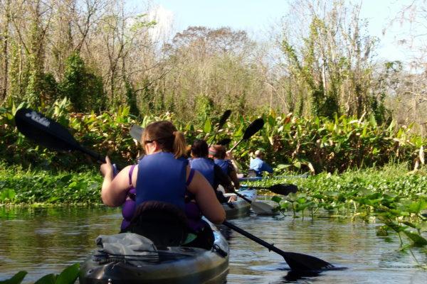 kayak tours orlando