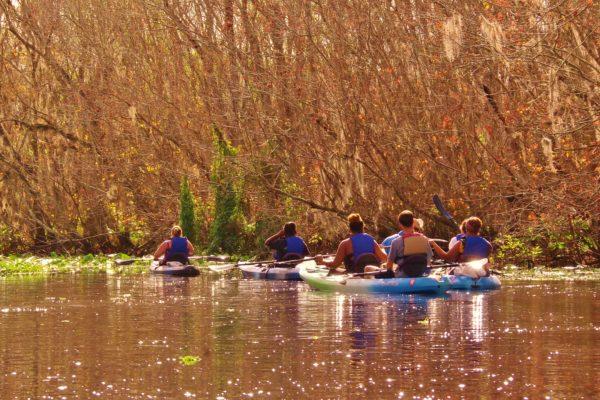 Kayak Florida Tours