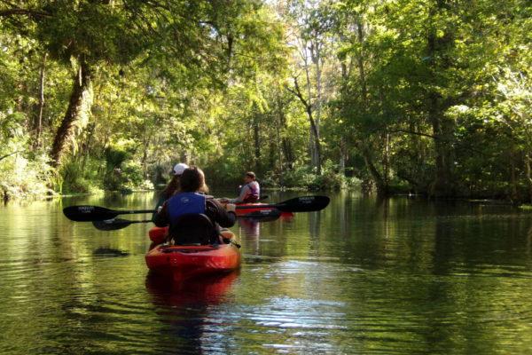 kayaking Kayaking Tours