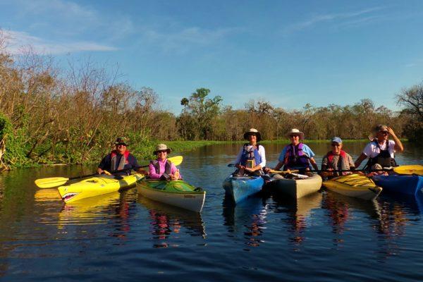 Florida Manatee Tours