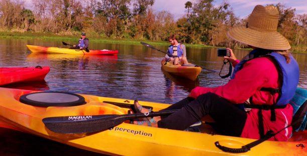 kayaking manatee tours blue springs