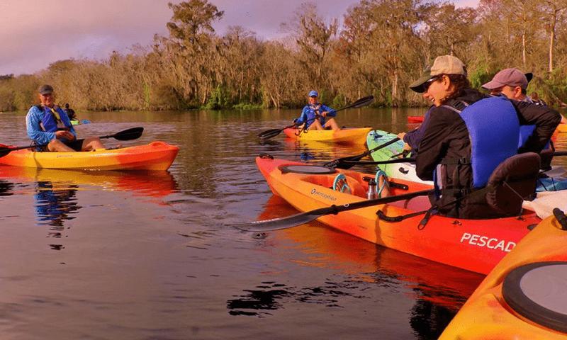 Manatee Kayak Tours Blue Springs