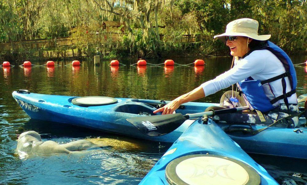 Kayaking Tours Blue Springs!