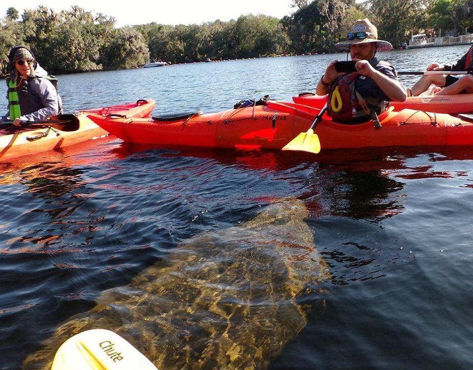 Orlando Kayaking