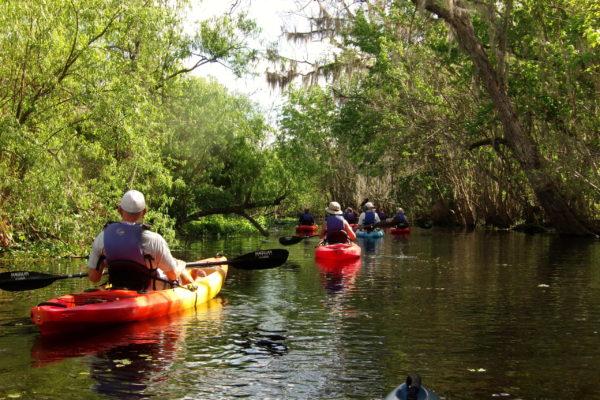 Florida Kayaking Tours