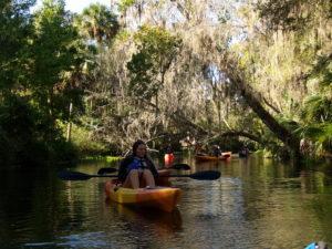 silver springs kayaking tours